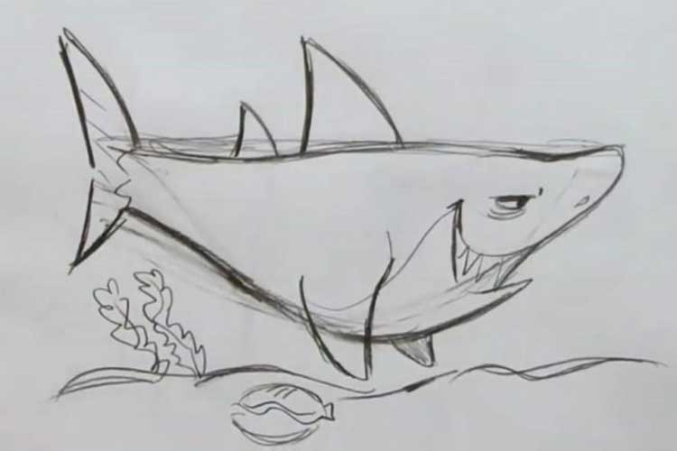 How-to-draw-a-shark