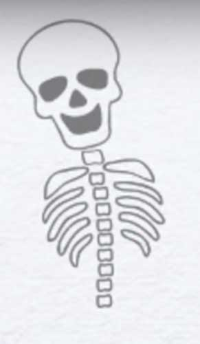 Drawing skeleton