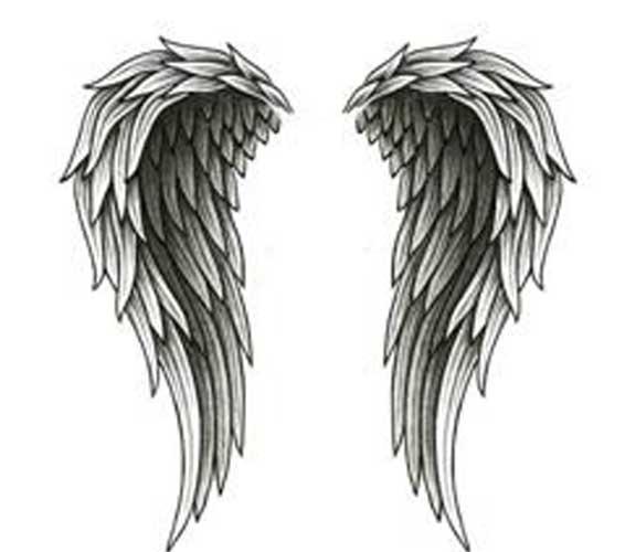 how to draw angel wings cartoon on wallon christmas