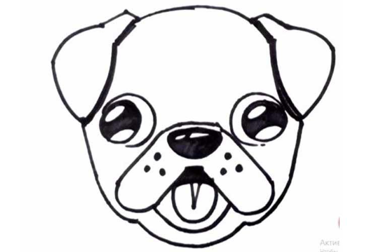 NANIERKOJ How to Draw Pug Life Cool Photo Girls Pocket Active Elastic Medium Length Swim Short