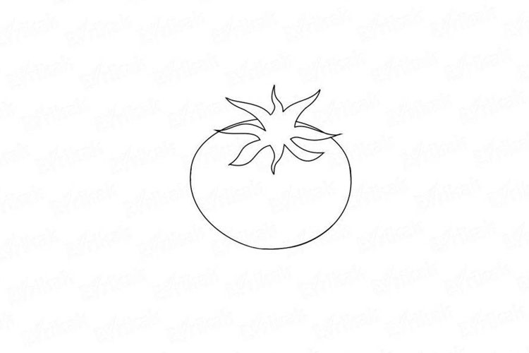 How to draw a tomato
