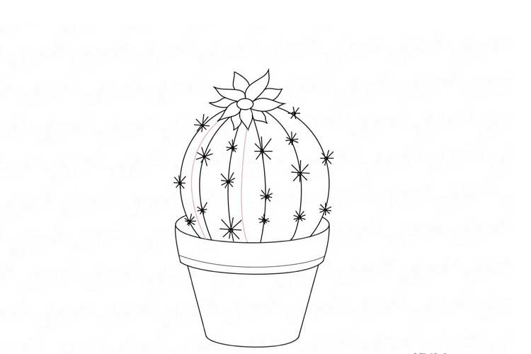 Cactus drawing