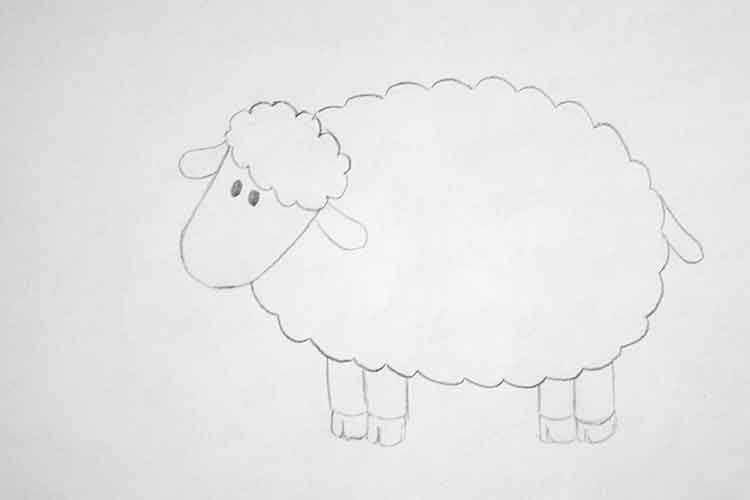 Lamb Drawing