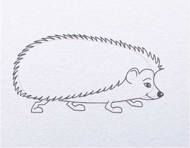 Hedgehog drawing