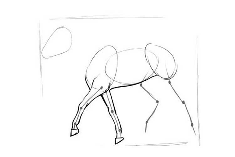 Horse side view Step