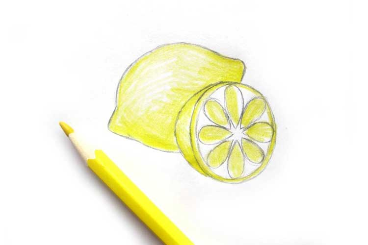 Lemon Drawing